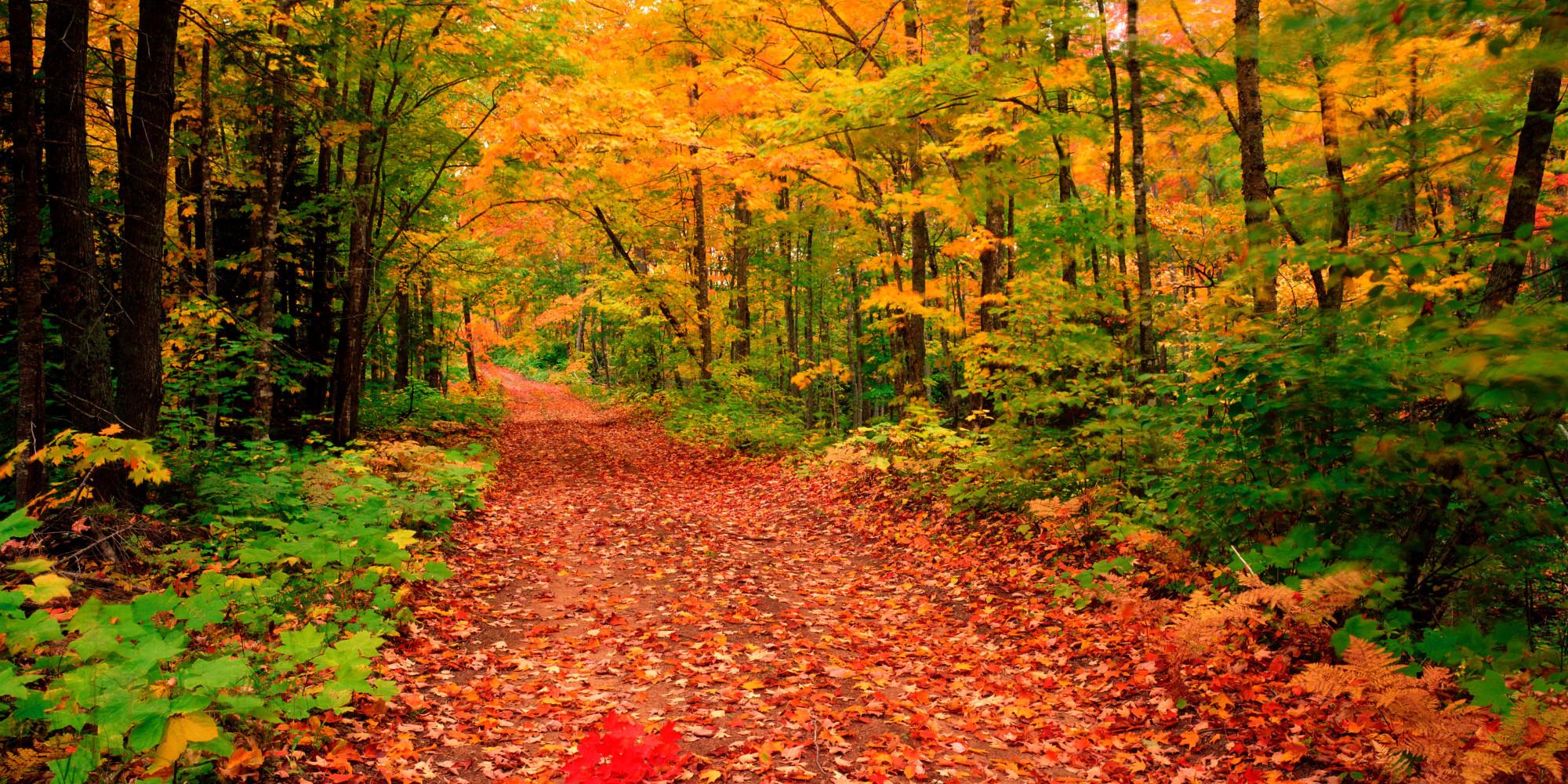 Multonomah Falls Wallpaper Michigan State Parks Offer 70 Fall Festivals