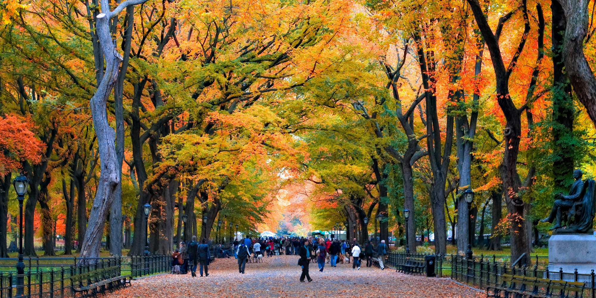 Central Park Fall Wallpaper Getaways Without Leaving Home Christine Negroni