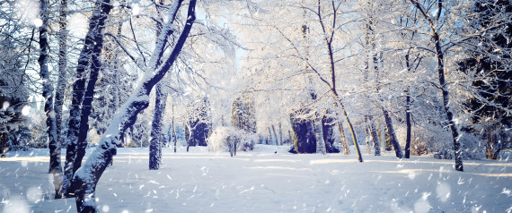Falling Snow Live Wallpaper Tutorial 13 Winter Scenes That Show The Best Side Of The Season