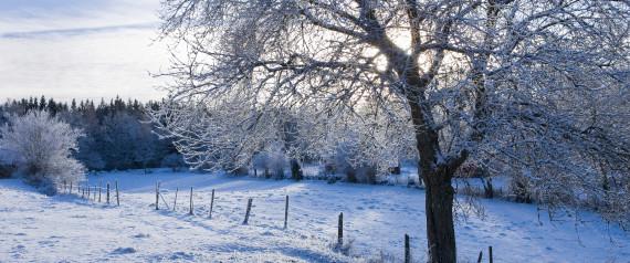 Seasonal Fall Coffee Desktop Wallpaper Winter Wonderland Scenes