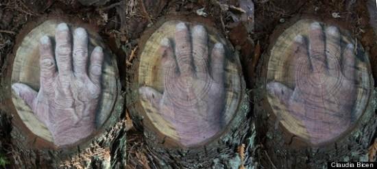 joses hand