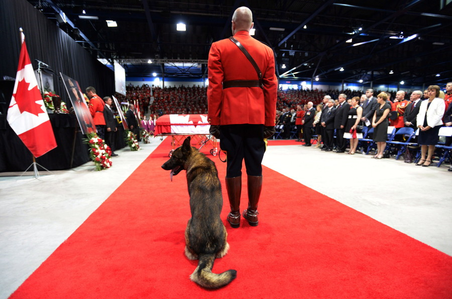 Fallen Mountie Dave Ross' Dog Danny Says Final Goodbye