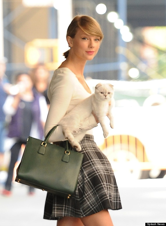 Swift Car Wallpaper Download A List Of Possible Places Taylor Swift Is Taking Her Cat