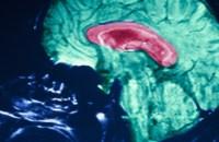 Mind Reading Technology Telepathy