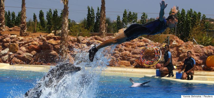 dolphinarium athens