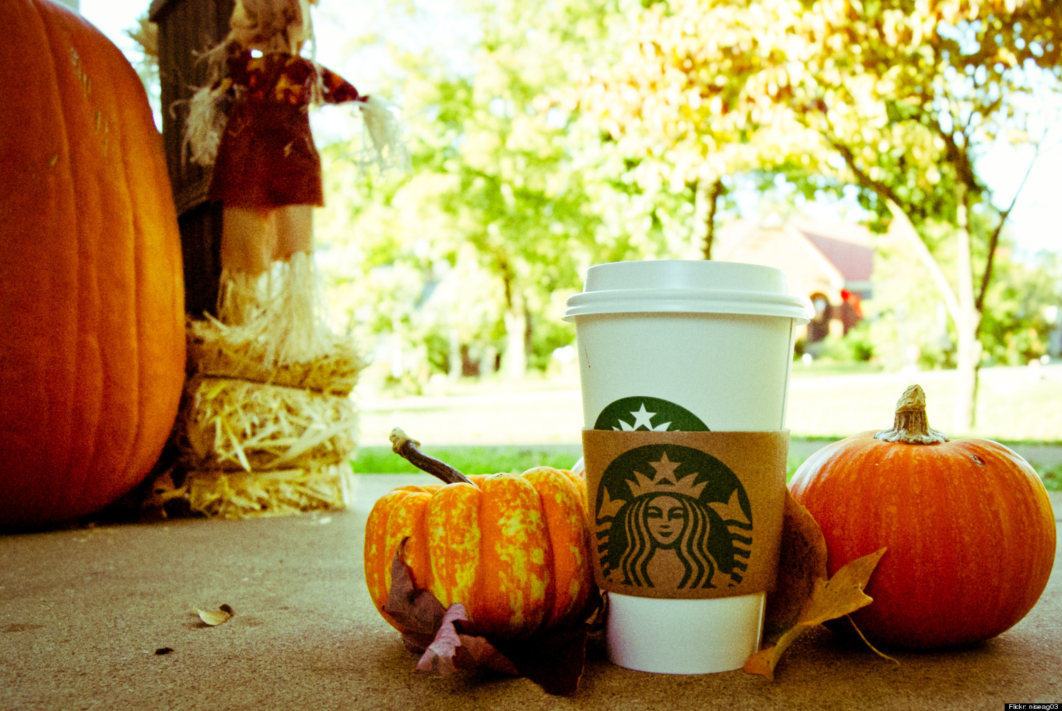 Fall Pumpkin Computer Wallpaper Pumpkin Spice Latte Shortage Starbucks Annual Autumn