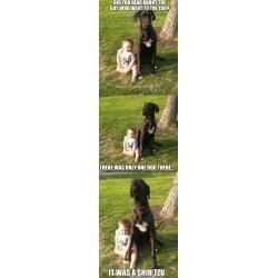 Plush Dog You Might Be A Meme Addict If You Use Your Own Son Bad Joke Dog Imgflip Bad Joke Dog Image Bad Joke Dog Baby bark post Bad Joke Dog