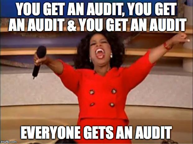 You Get An Audit, You Get An Audit, \ You Get An Audit!