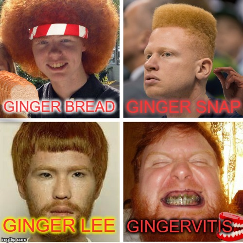 Don\u0027t call us \ - Gingervitis