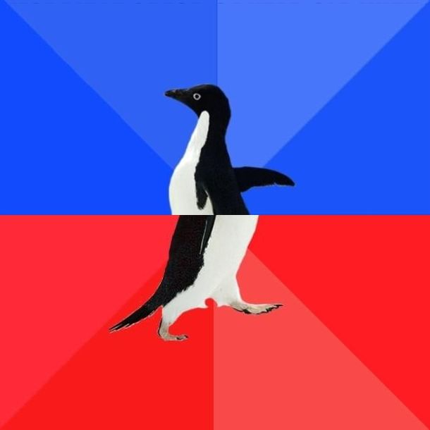 No Yes Penguin Blank Template - Imgflip - penguin template