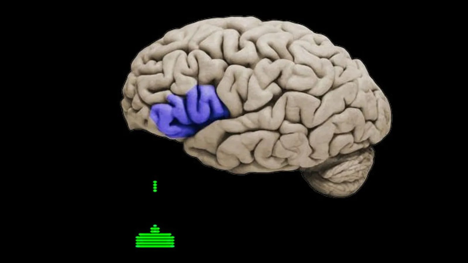 Brains Games Scientists Prove Once Again That Playing Violent Video Games