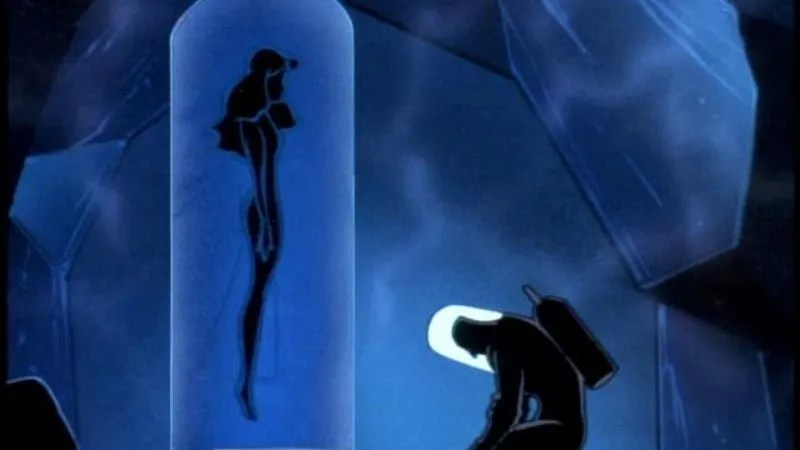 Heart Breaking Girl Wallpaper Batman The Animated Series Deep Freeze