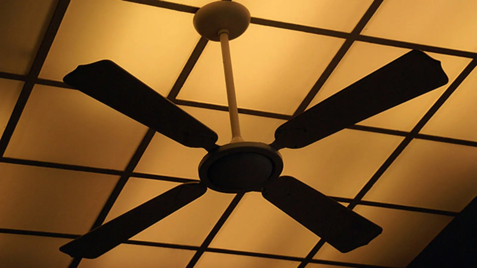Small Ceiling Fans For Sale Switch Your Ceiling Fan S Spin Direction To Warm Your Home In The