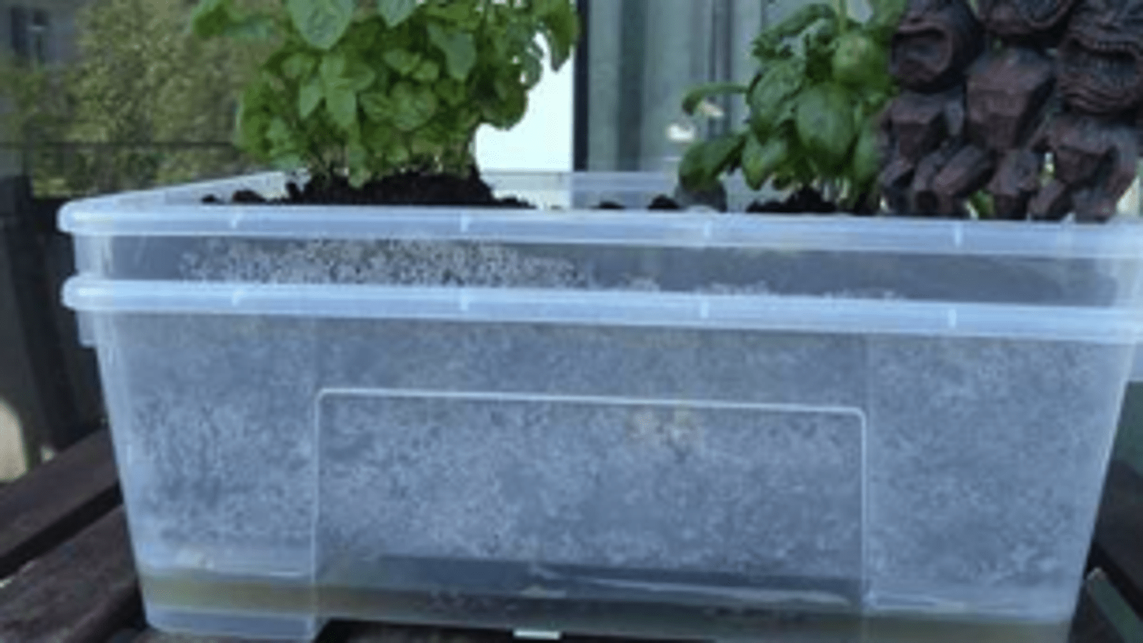Make Self Watering Planters Diy Self Watering Garden