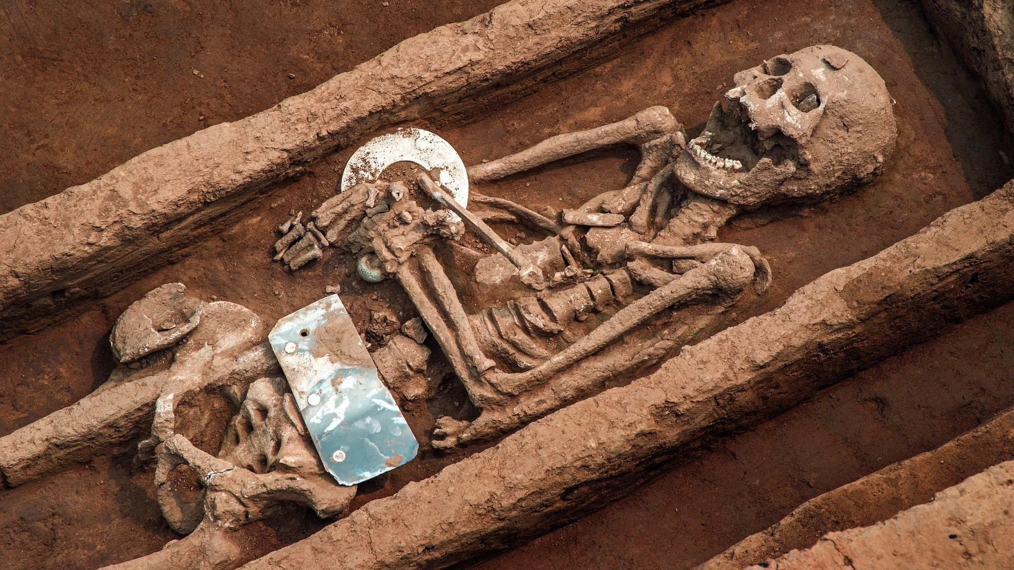 Cop Car Wallpaper Archaeologists Unearth Grave Of Giants In China