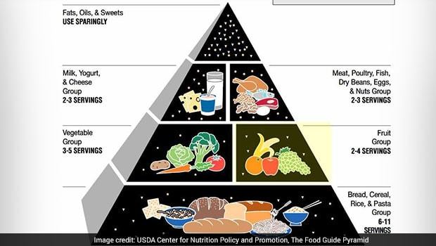 The Food Pyramid Should You Follow the Pyramid Theory to Plan Your
