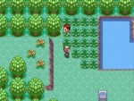Pokemon Emerald Screen Shot