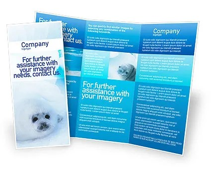 Fur-Seal Brochure Template Design and Layout, Download Now, 02230 - free microsoft word brochure template