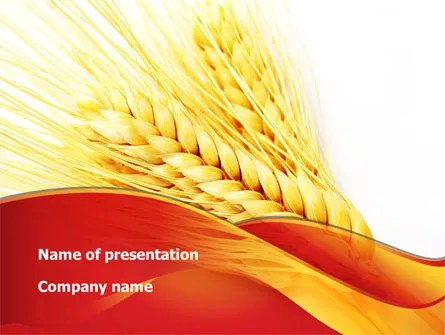 Wheat Harvest PowerPoint Template, Backgrounds 08814 - wheat template