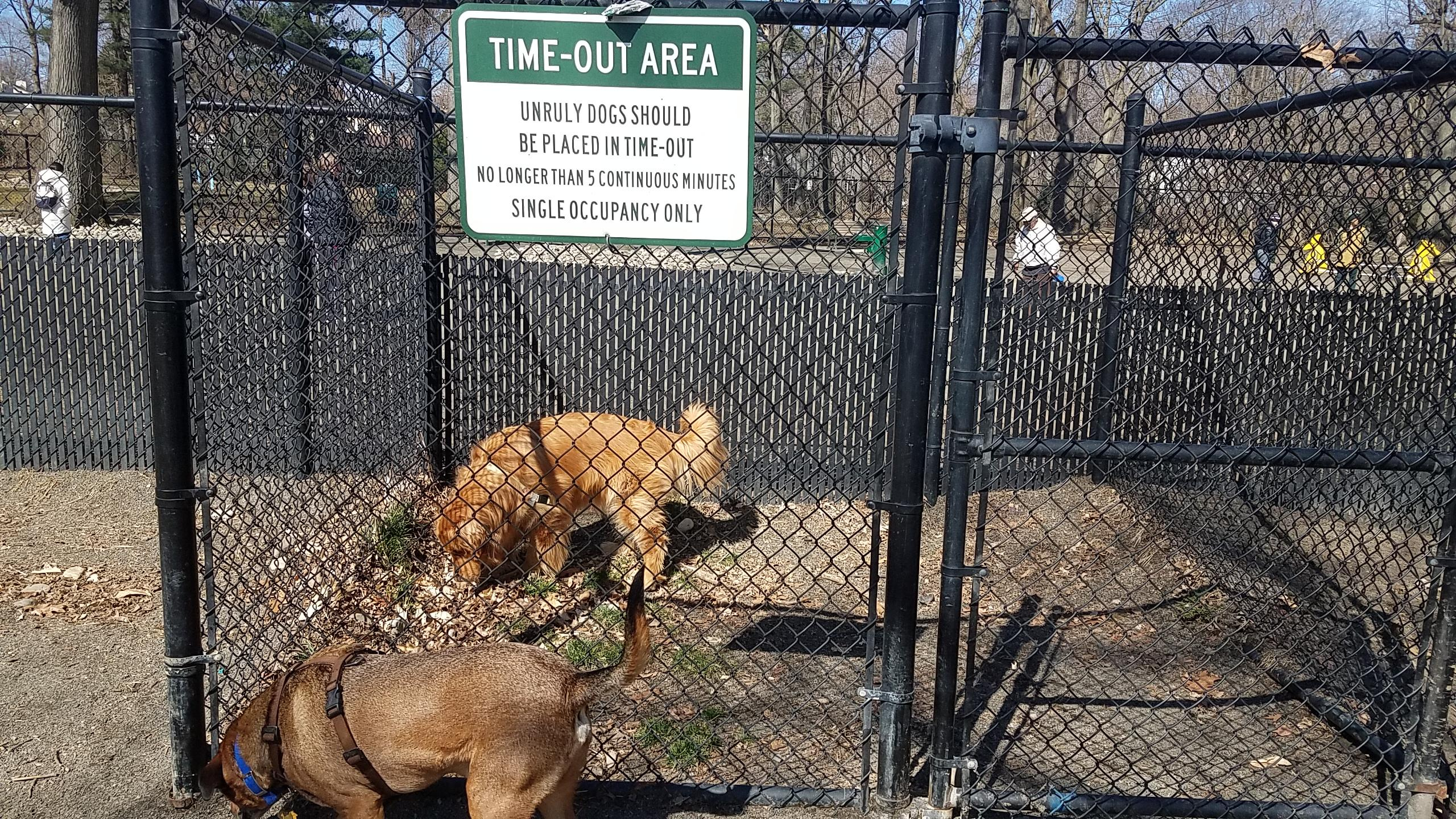 Sas Bad 24 This Dog Park Has A