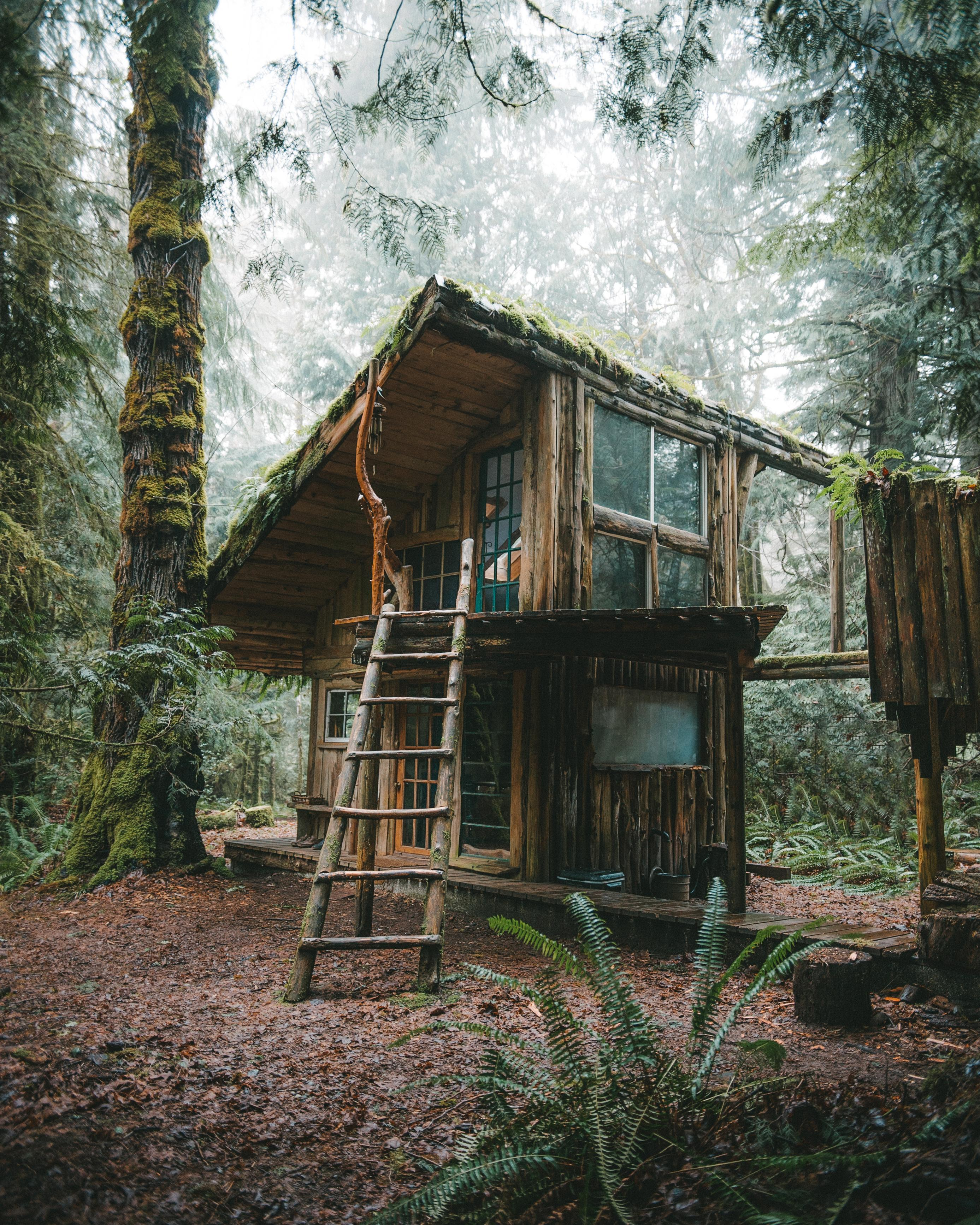 The Perfect Fairytale Cabin Located Just Outside Of Olympia Wa Oc The Best Designs And Art From The Internet