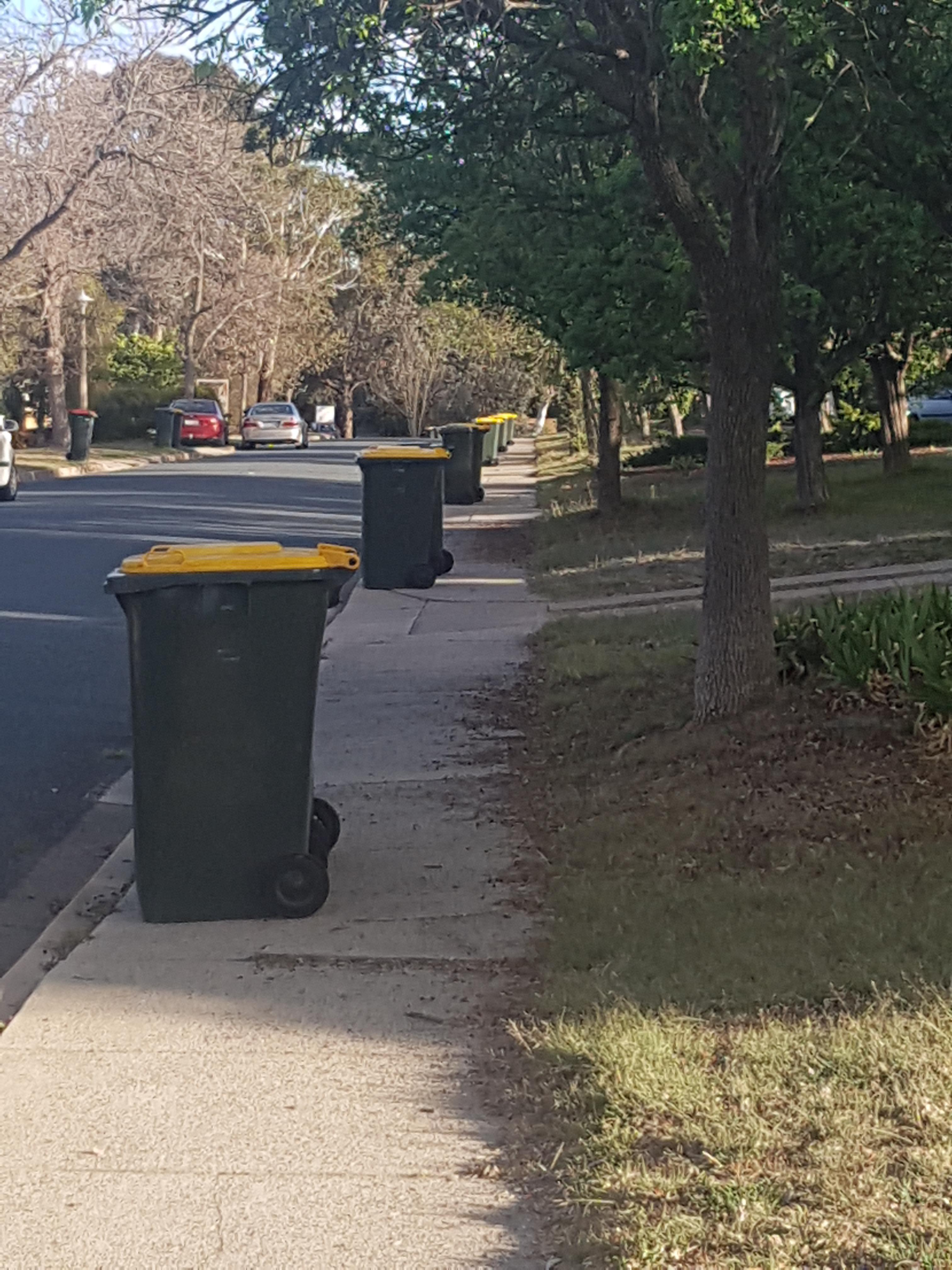 Canberra Today What S Happening With The Bins Today Is There A Garbo Holiday