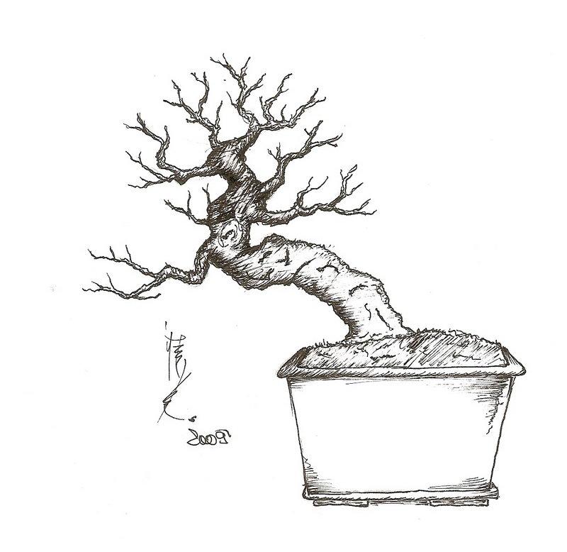 wiring small bonsai