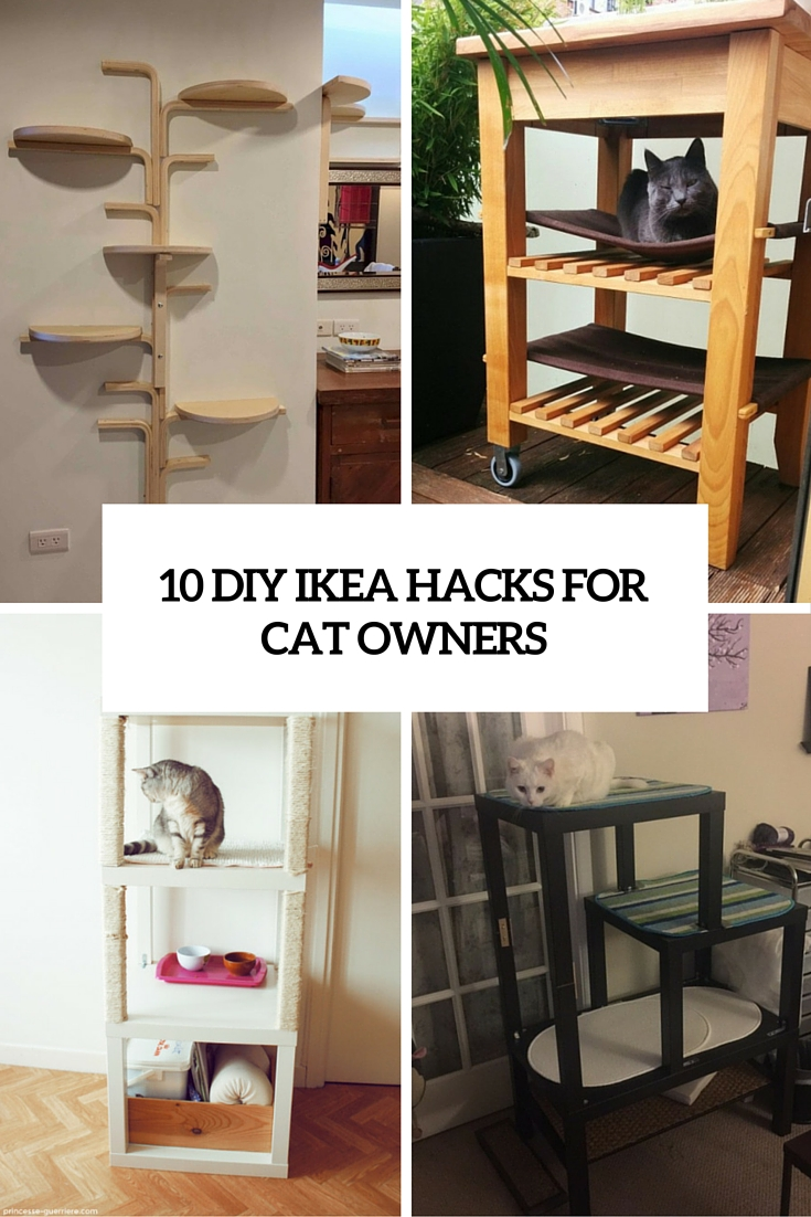 10 Various And Cute Diy Ikea Hacks For Cat Owners Shelterness