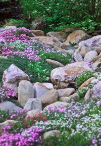 20 Beautiful Rock Garden Design Ideas - Shelterness