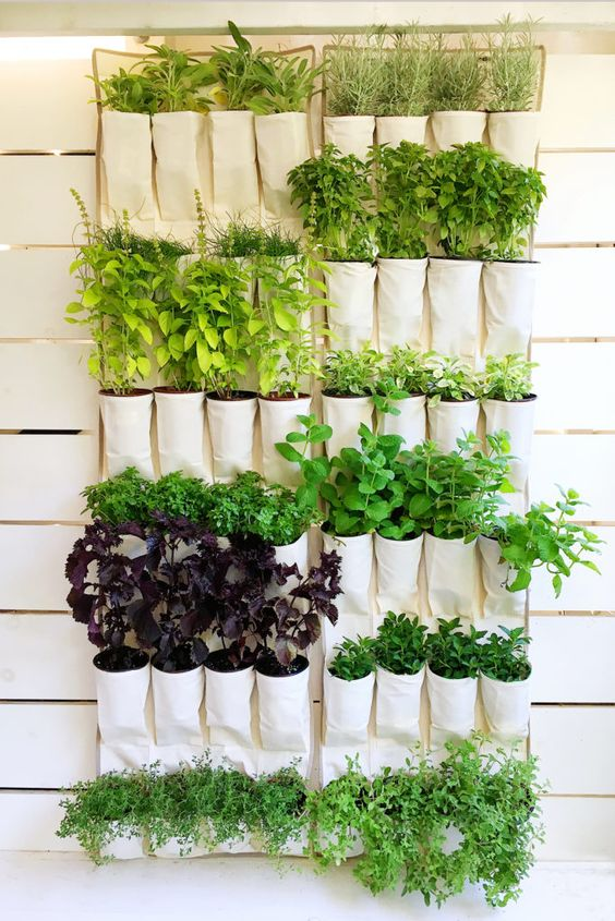 Outdoor Chalkboard Paint 18 Easy Hanging Gardens Ideas For Outdoors - Shelterness