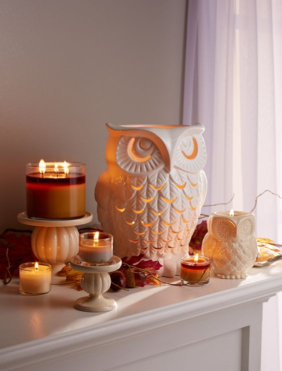 Fall Owl Wallpapers How To Add Owls To Your Home Decor 15 Ideas Shelterness