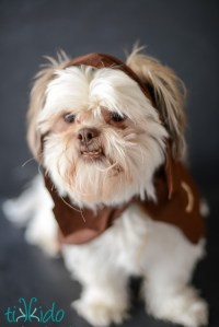 Fun DIY Ewok No Sew Dog Costume - Shelterness
