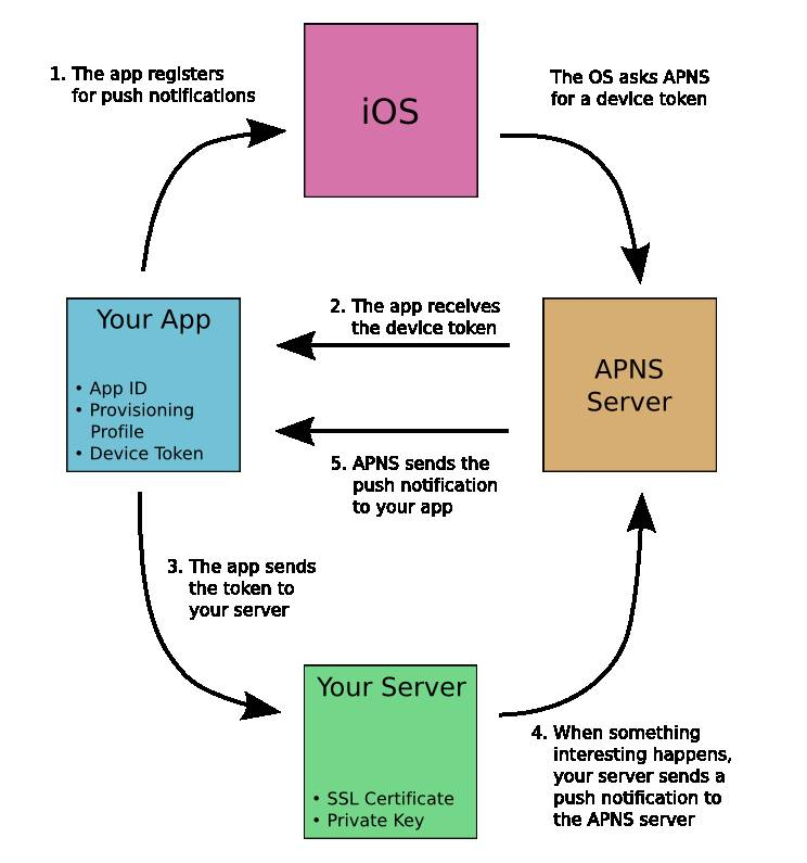How do iOS Push Notifications work? - Stack Overflow