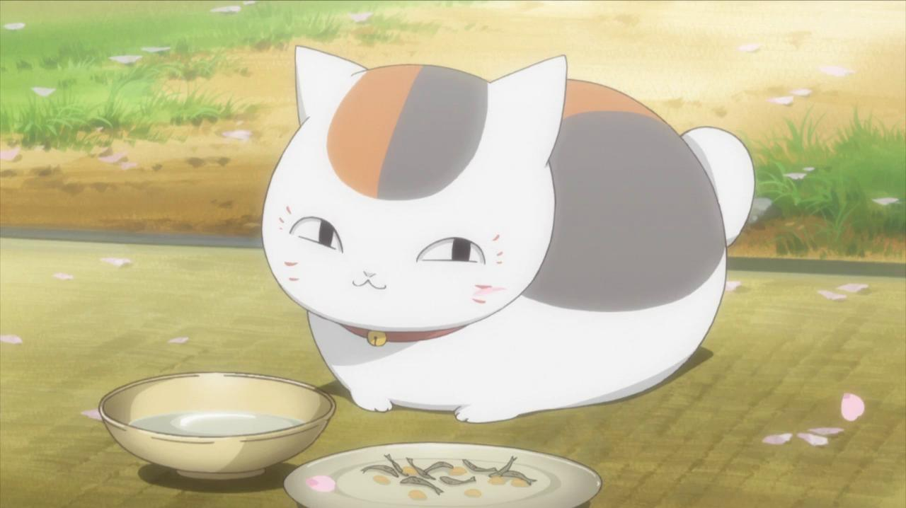 Cute But Psycho Wallpaper Natsumes Book Of Friends Why Is Nyanko Sensei A Round