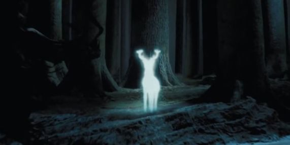 Image result for stag patronus