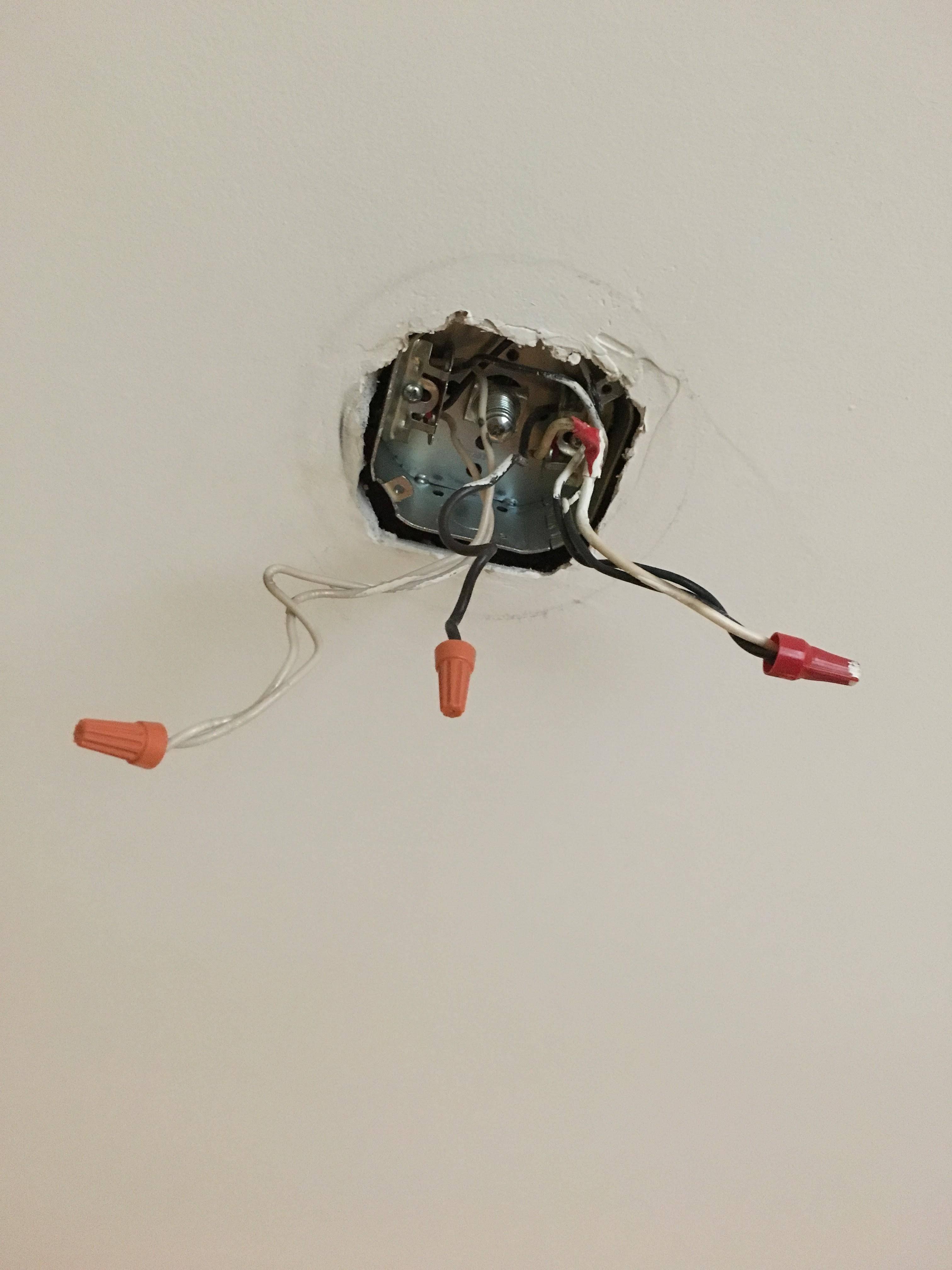 light fixture wiring 2 white 2 black