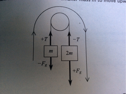 newtonian mechanics - Pulley system how can tensions be equal