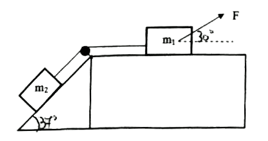 calculating the net force f ma free body diagram youtube