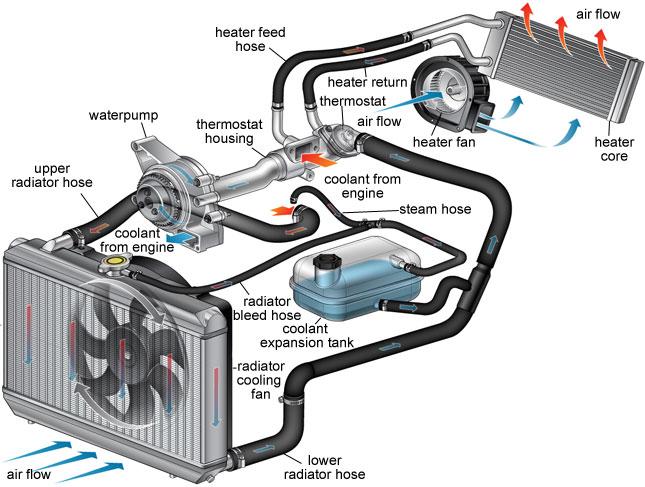 Radiator Coolant Diagram - Wiring Diagram Online