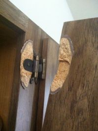 repair - Is there any way to fix a hinge pulled out of ...