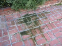 How To Clean Algae From Concrete Patio. Cleaning How Do I ...