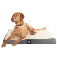 Serta Orthopedic Quilted Pillow-Top Dog Bed  3627