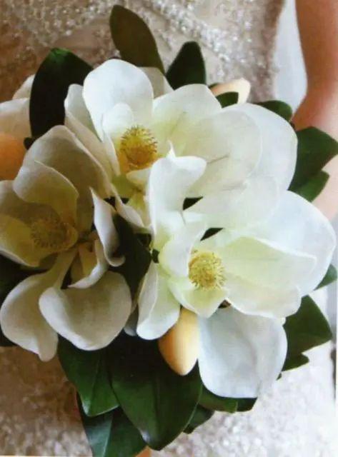 magnolia paper flower