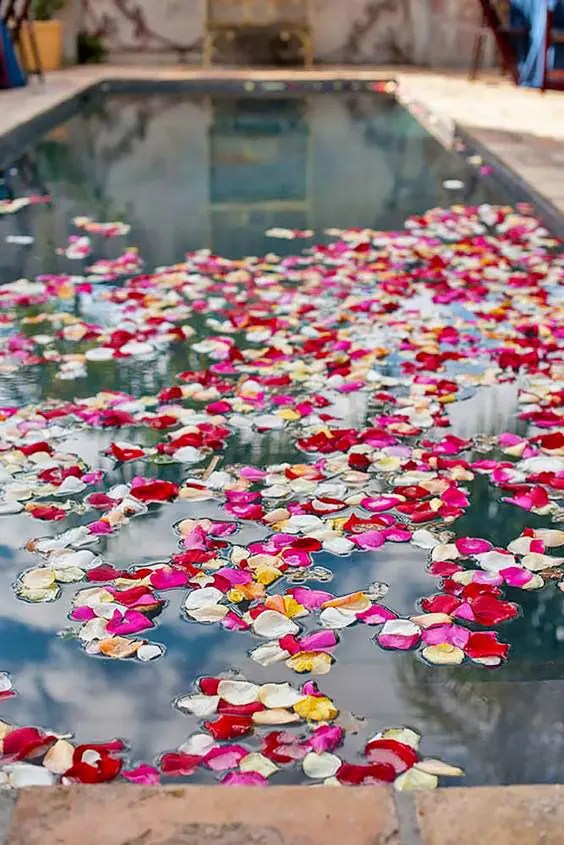 Picture Of bold flower petals floating in the pool