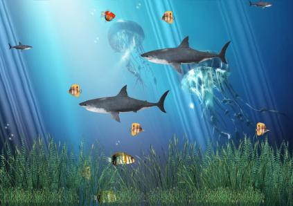 3d Animated Wallpapers And Screensavers Full Version Free Download Download Coral Reef Aquarium Animated Wallpaper