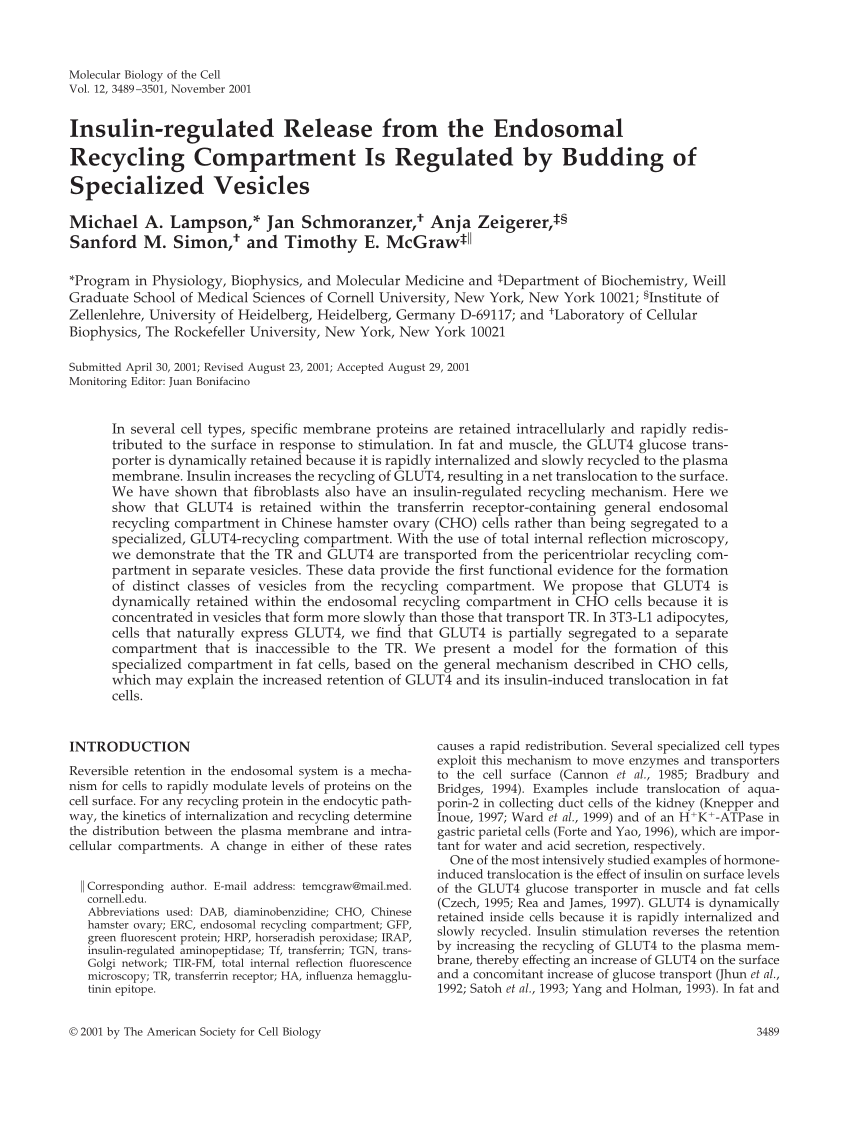 Recycling Heidelberg Pdf Insulin Regulated Release From The Endosomal Recycling