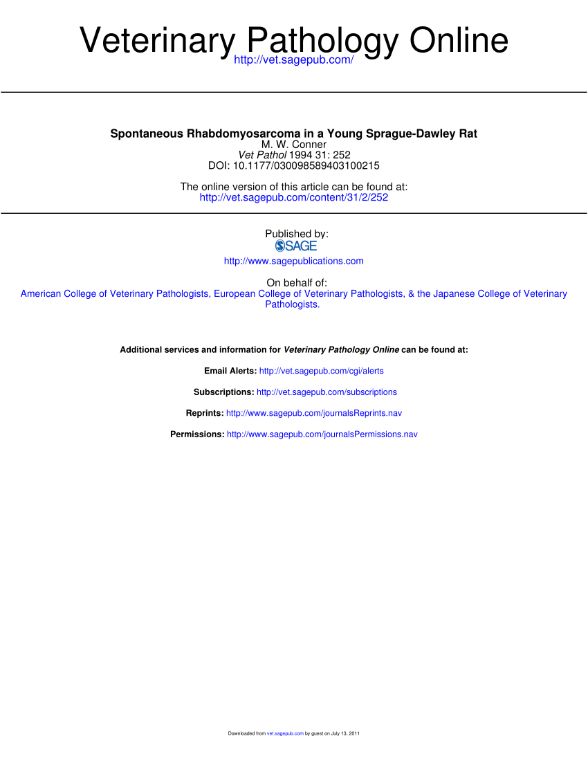 Ra T Vel Pdf Anti Rat Myoglobin Antisera In The Immunocytochemical