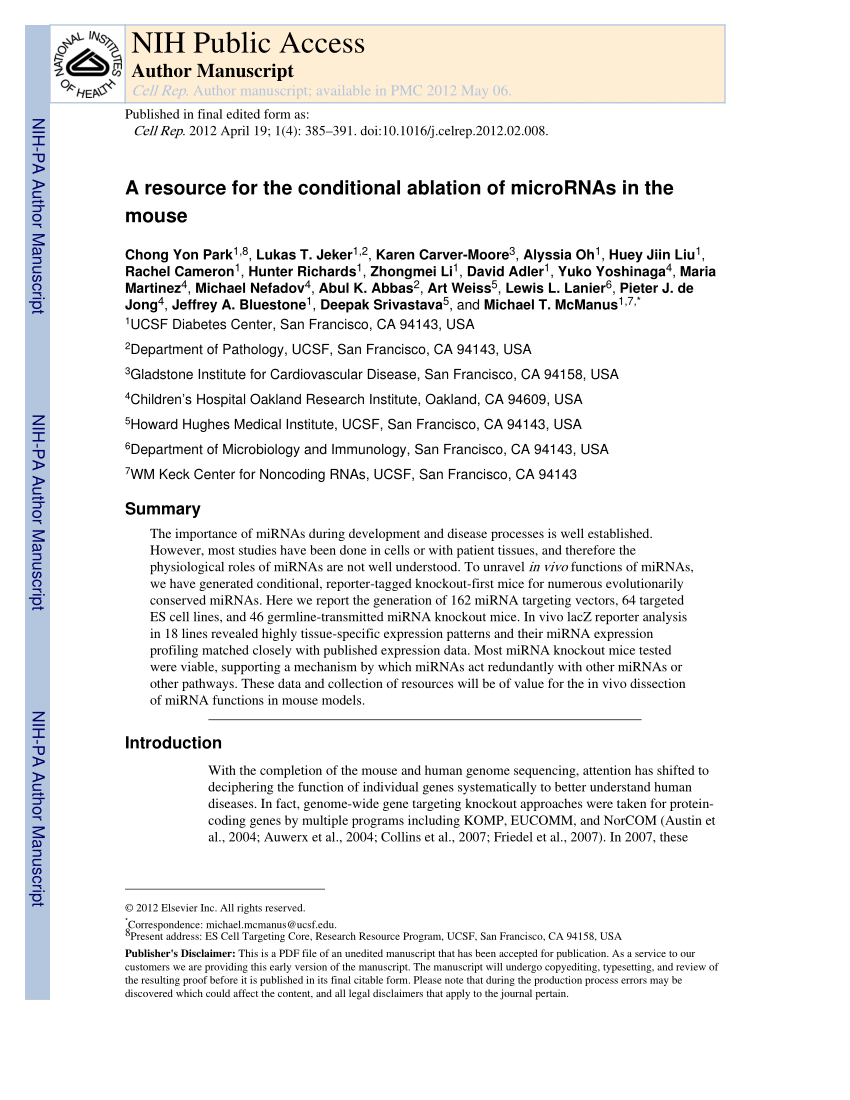 Global Küchen Test Pdf Dgcr8 Mediated Production Of Canonical Micrornas Is Critical