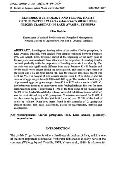 Reproductive biology and feeding habits of the catfish ...