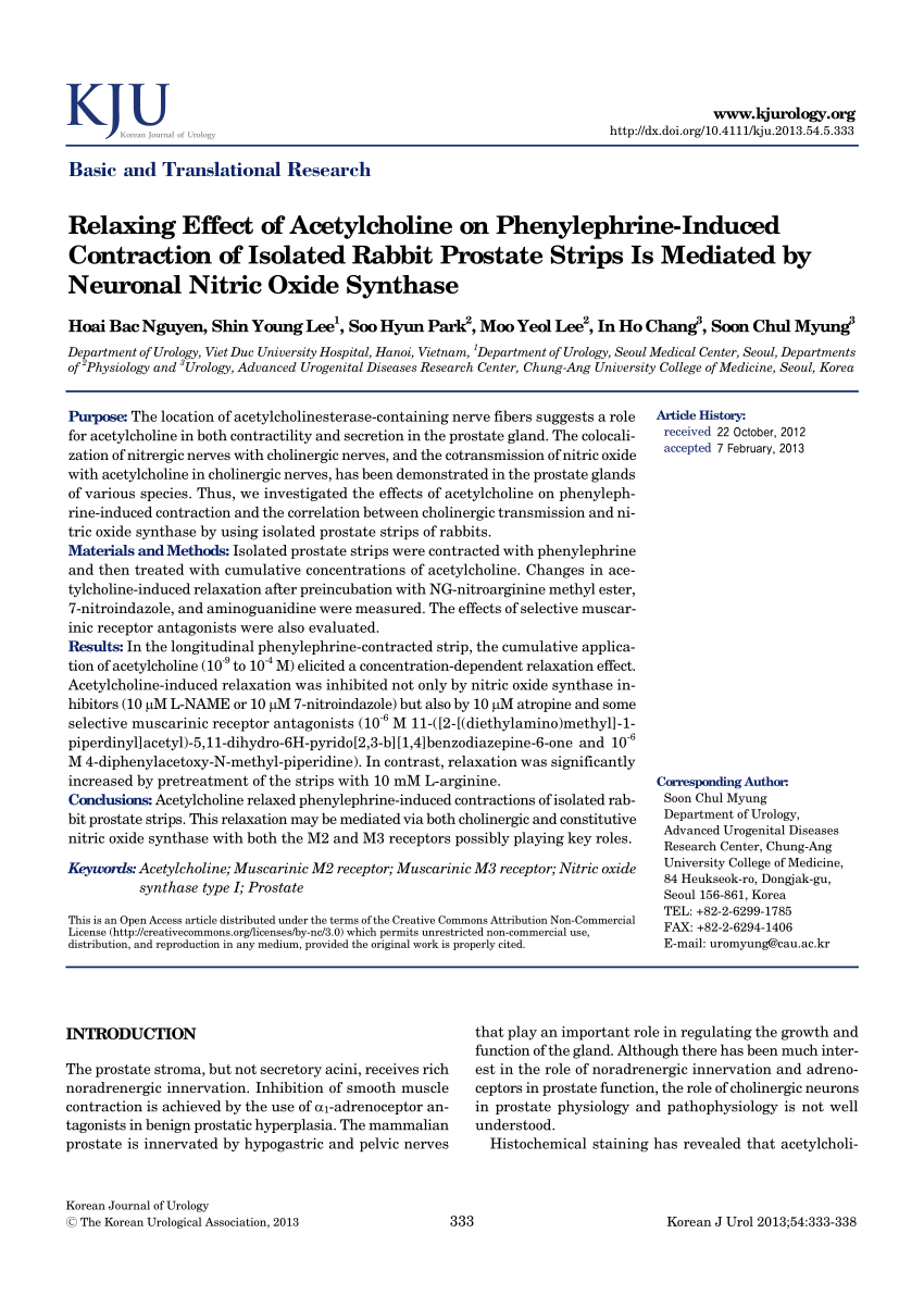 Relax Fh Rt Pdf Relaxing Effect Of Acetylcholine On Phenylephrine Induced